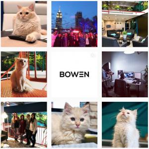 Aesthetic Instagram Accounts: Best Agency Instagram Accounts - Bowen Media - Sked Social