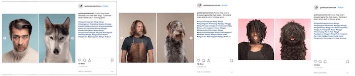 April Social Media Holiday Campaign Ideas - National Pet Day - Sked Social