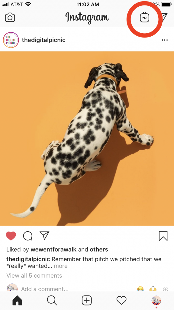 IGTV logo on Instagram app