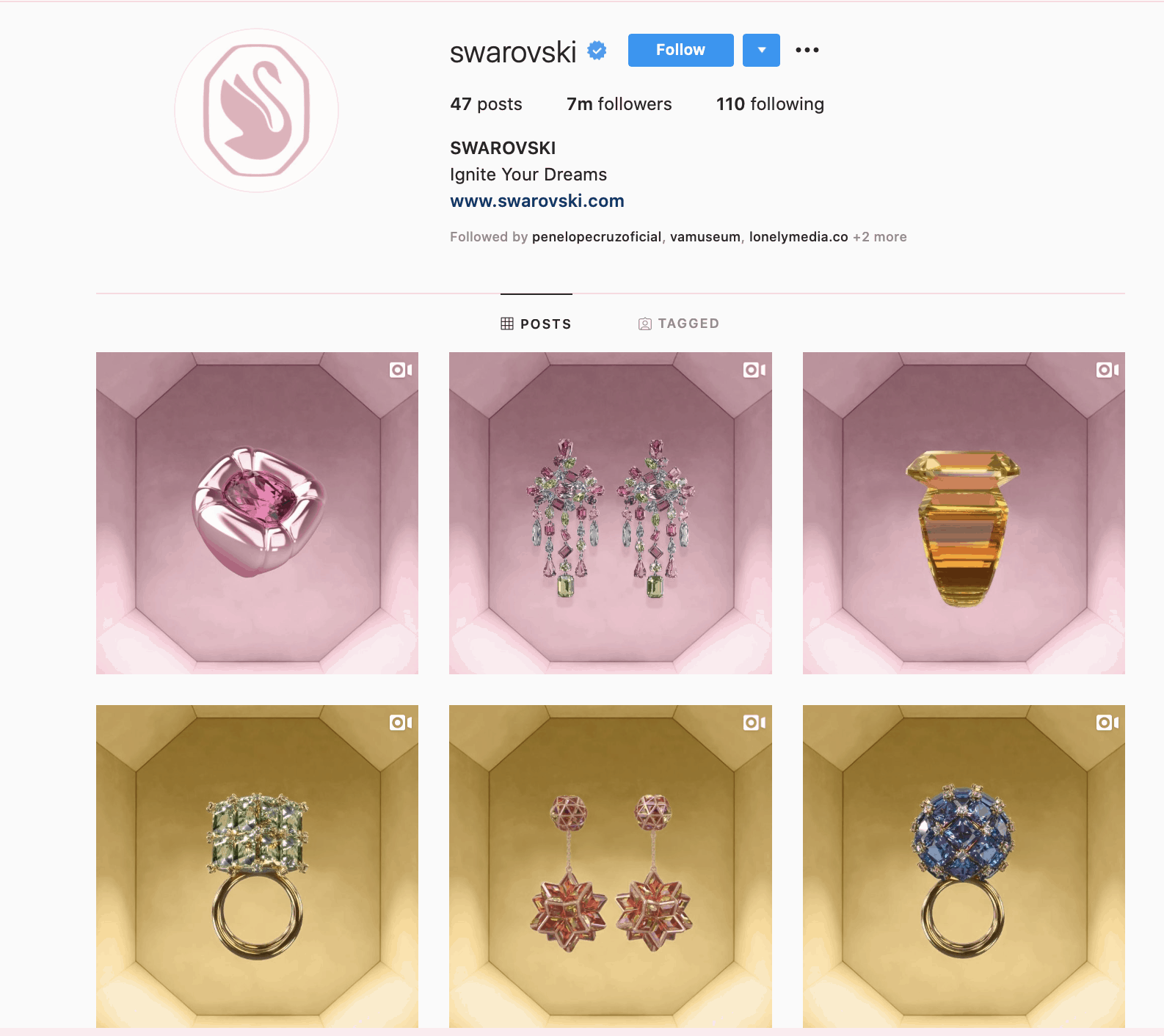 Brand aesthetics used to attract more followers on Instagram.