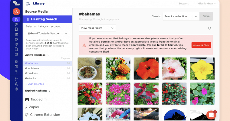 Sked Social's hashtag search feature showing example search for flowers hashtag