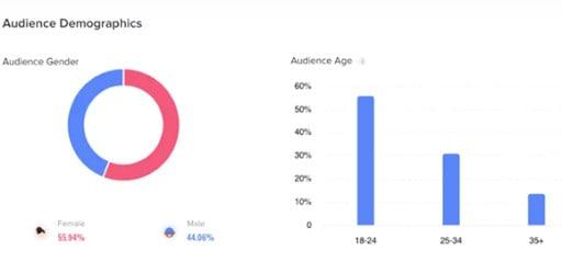 TikTok demographics breakdown screen