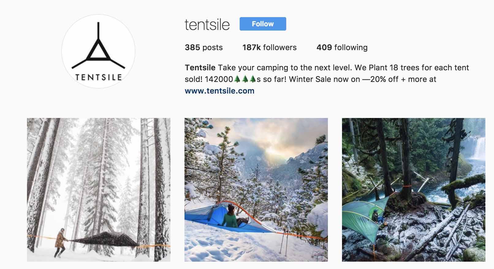 instagram-bio-ideas-tentsile