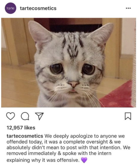 instagram fails Tarte Cosmetics