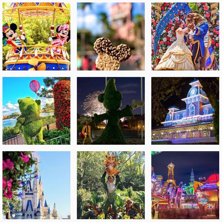Walt Disney World How Often Should I Post on Instagram - Sked Social